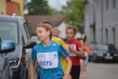 Schueler2016_41